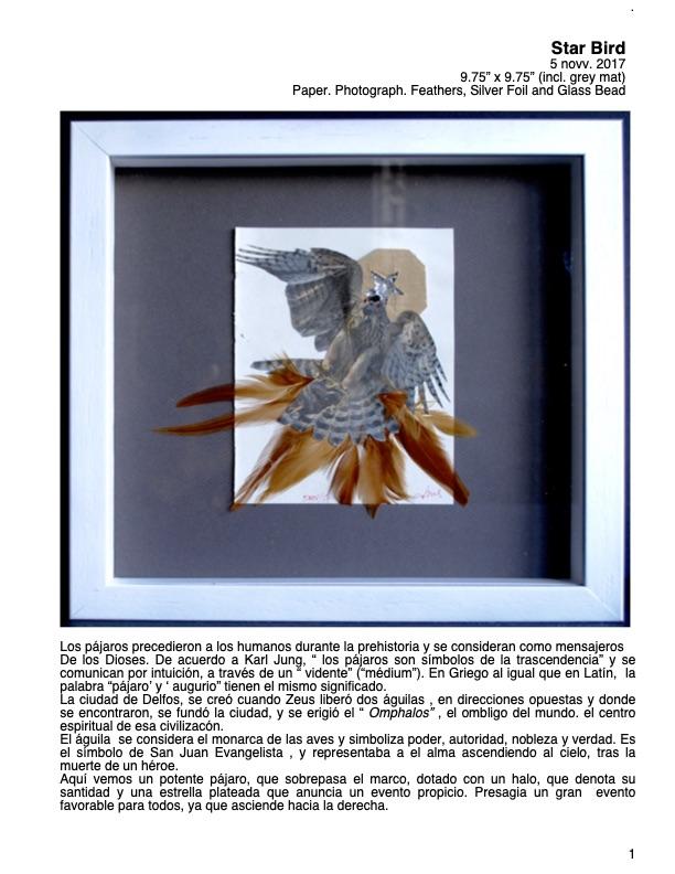 Ficha Técnica Star Bird